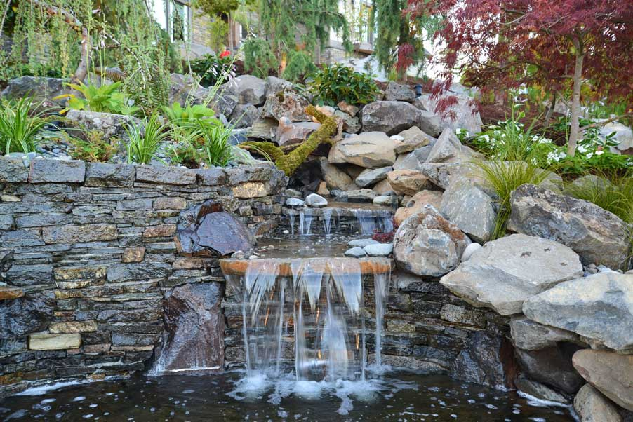 Portland, OR Landscape Designer